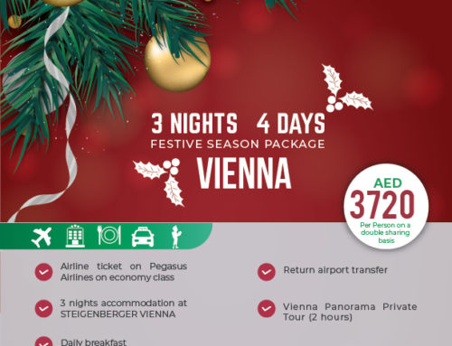 VIENNA Christmas Package